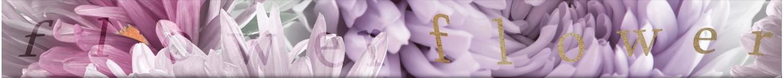 Brau faianta Annecy flower marengo lila lucios 4.8 x 50 cm