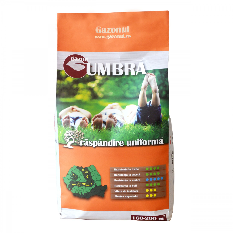 Seminte gazon pentru umbra, 4 kg