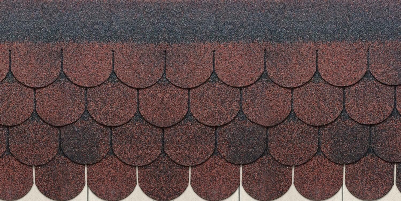 Sindrila bituminoasa Finlandeza solzi rosu / negru