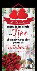 Tablou cu mesaj Valentine s Day, ES9525, dreptunghiular, 48 x 26 cm
