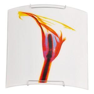 Aplica Tulip KL 5981, 1 x E27