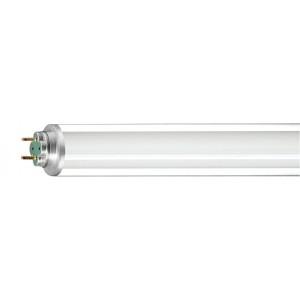 Neon Master Tl-D Xtra Polar 36W/840