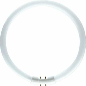 Neon circular 22W Philips 2GX13 lumina neutra TL5 230 mm