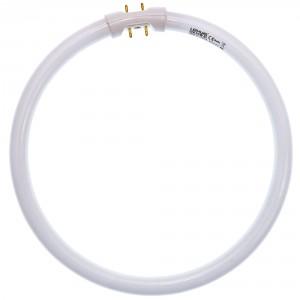 Neon circular 22W Lohuis 2GX13 lumina rece T5 225 mm