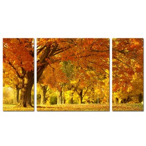 Tablou canvas 3 piese, PCSTA14-PA2502, stil natura, 2 piese - 70 x 30 cm + 1 piesa - 70 x 70 cm