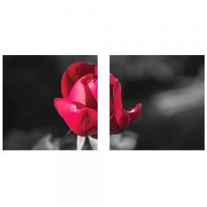 Tablou canvas 2 piese, PT1210 Boboc, panza + sasiu brad, stil floral, 40 x 40 cm