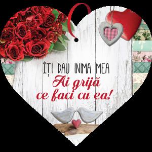 Tablou cu mesaj Valentine s Day, ES9507, inima, 22 x 20 cm