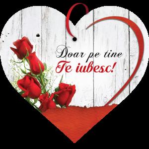 Tablou cu mesaj Valentine s Day, ES9515, inima, 22 x 20 cm