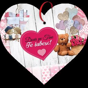 Tablou cu mesaj Valentine s Day, ES9505, inima, 22 x 20 cm