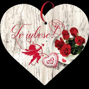 Tablou cu mesaj Valentine s Day, ES9907, inima, 22 x 20 cm