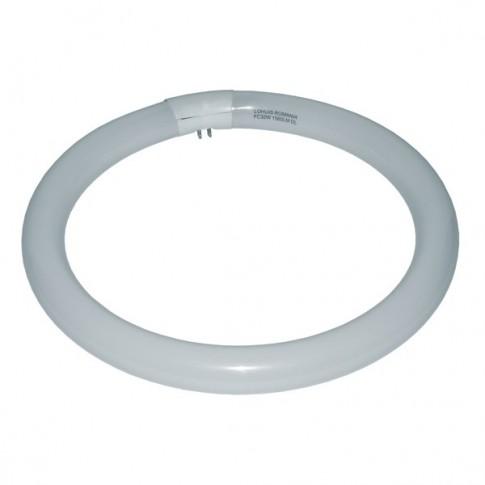 Neon circular 32W Lohuis 14143 lumina rece 305 mm