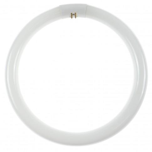 Neon circular 32W Lohuis 14143 G10q lumina rece 305 mm