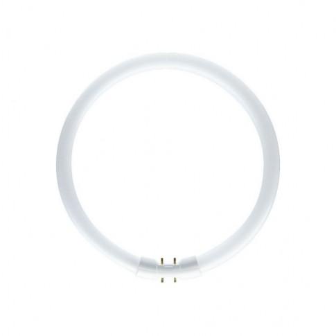 Neon circular 60W Philips 2GX13 lumina neutra TL5 379 mm