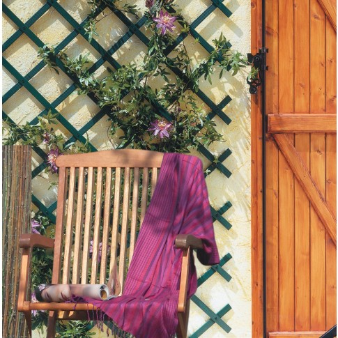 Suport pentru plante Trellis, extensibil, plastic, verde, 50 x 150 cm
