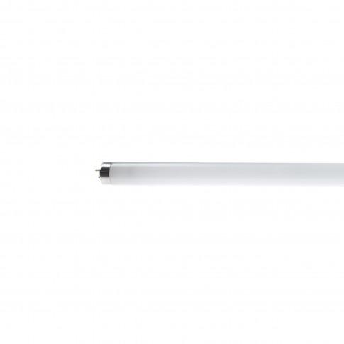 Neon 18W Philips Master TL-D Super 80 G13 lumina rece T8 589 mm