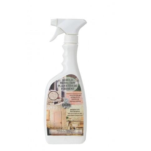 Spray de protectie pentru perete, interior / exterior, Modulo, 750 ml