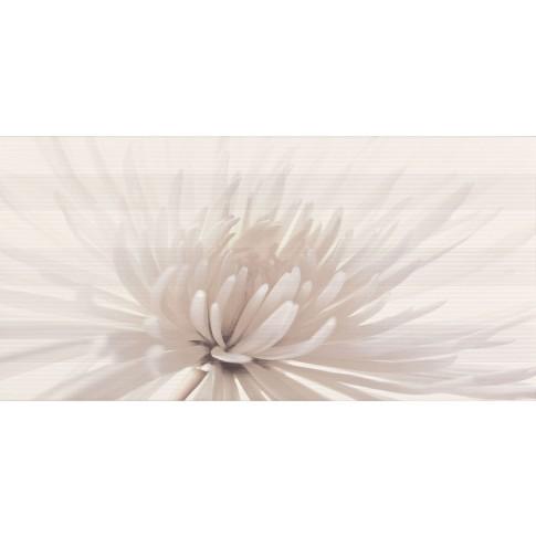 Decor faianta baie / bucatarie Avangarde model floral lucios crem 29.7 x 60 cm