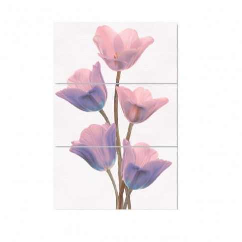 Decor faianta baie / bucatarie Spectra Samira, lila, lucios, 25 x 50 cm, set 3 bucati