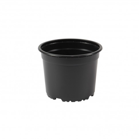Ghiveci rasad, plastic, negru, D 14 cm