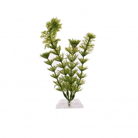 Planta decorativa acvariu pesti, Ambulia-S, pvc