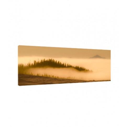 Tablou C01696, peisaj, canvas + sasiu brad, 30 x 90 cm