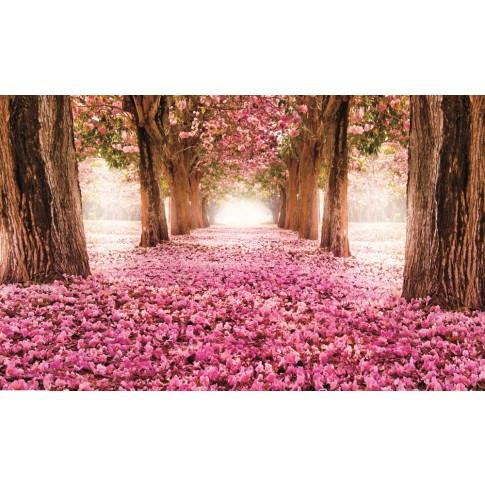 Fototapet duplex Alee cu flori 851P8 368 x 254 cm