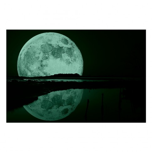Tablou dualview DTB6880, Reflexia lunii, canvas + lemn de brad, 60 x 90 cm