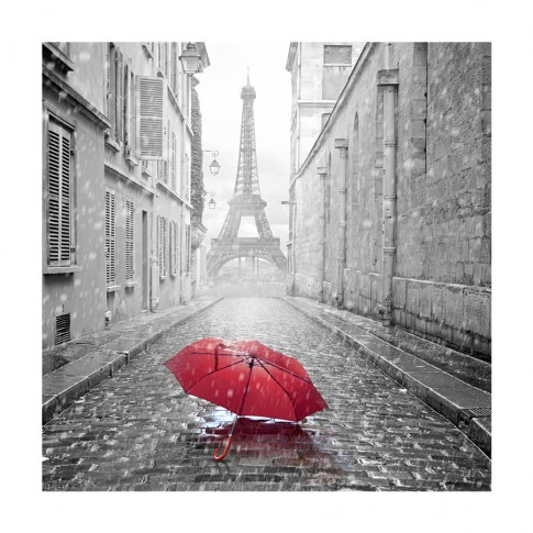 Tablou TA15-PAL07096, Turnul Eiffel, canvas, 50 x 50 cm