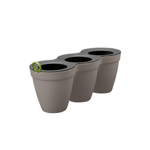 Ghiveci din plastic Ivy Herbs Curver, gri, 33 x 12.2 x 12.7 cm, set 3 bucati