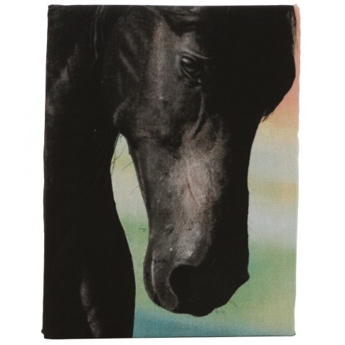 Lenjerie de pat, copii, 1 persoana, Black horse, bumbac 100%, 2 piese, multicolor