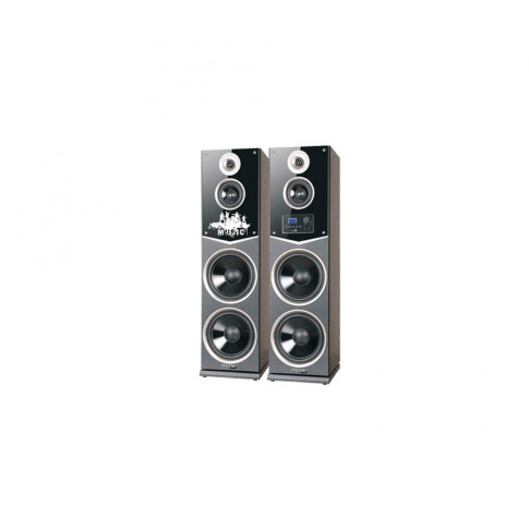 Sistem audio Meister Hausgerate HRH-2105D, 2 boxe active, 160 W, Bluetooth, USB, SD card, Aux in, radio FM, karaoke, negru + maro, 2 microfoane, telecomanda