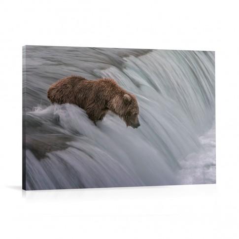 Tablou 03202, Urs pescar, canvas, 60 x 90 cm
