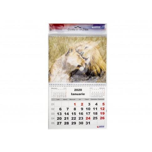 Calendar perete 2020, carton lucios, format A3, diverse modele, 12 coli