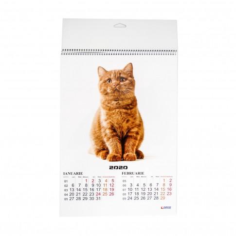 Calendar perete 2020, Catei/Pisici, hartie lucioasa, format A3, diverse modele, 6 coli