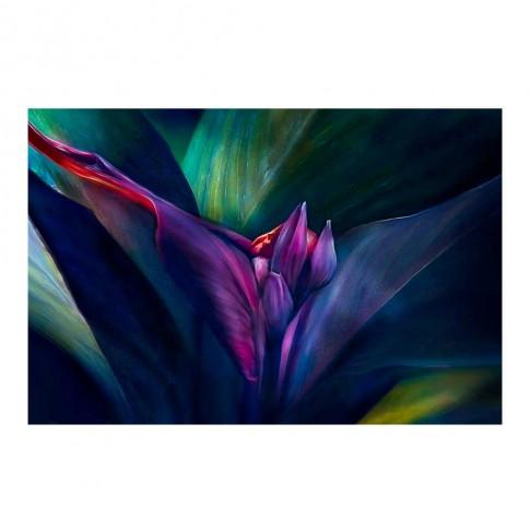 Tablou canvas Decor 04541, Tropical, panza + sasiu, 60 x 90 cm