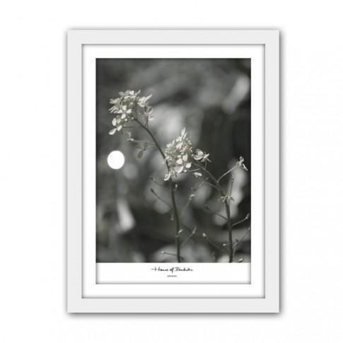 Tablou TA20-AP05150-3, flori, carton, cu rama, 40 x 30 cm