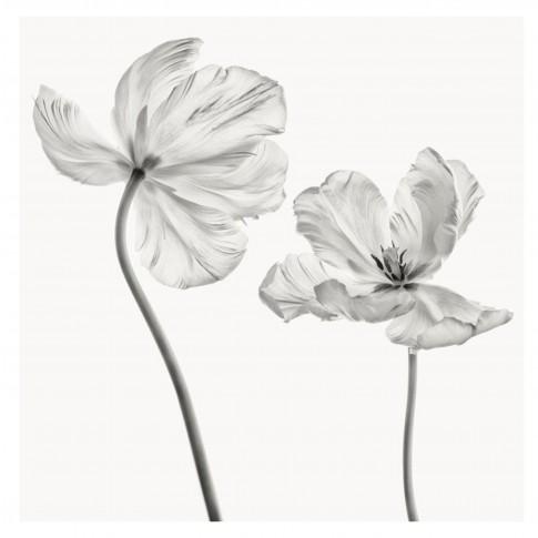 Tablou canvas Decor, flori, panza + sasiu, 60 x 60 cm