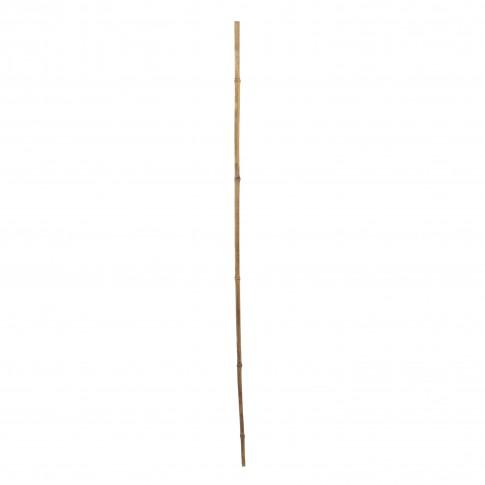 Arac bambus Versay BS-20-270, 270 cm x 20 mm