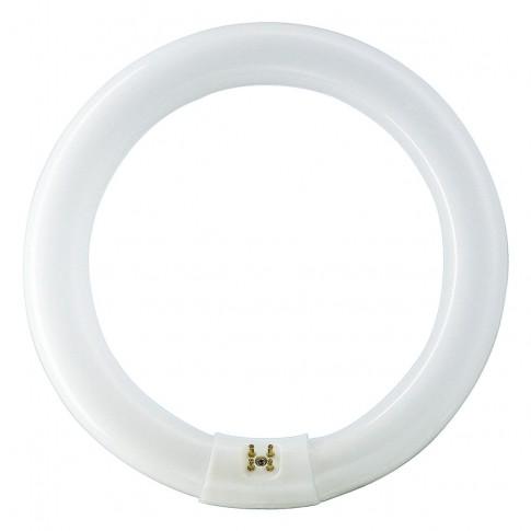 Neon circular 22W Philips Master TL-E G10q lumina neutra 213.5 mm