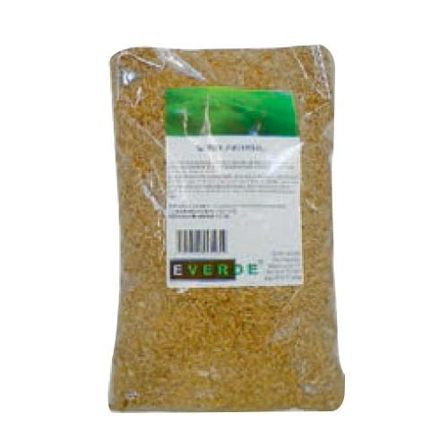 Seminte gazon universal 1 kg