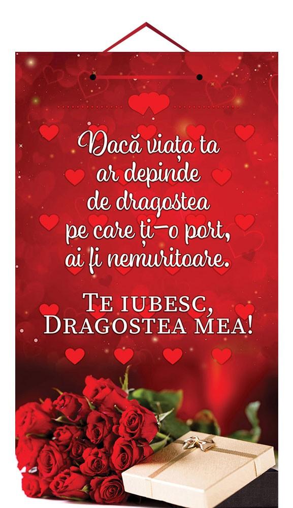 Tablou mic cu mesaj Valentine s  Day, ES9913, dreptunghiular, 25 x 14 cm