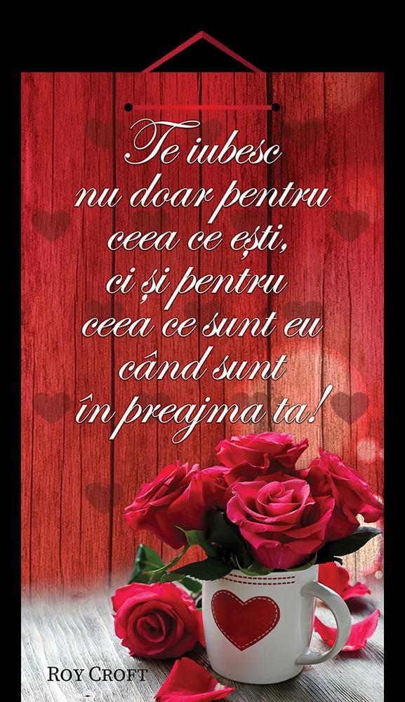 Tablou mic cu mesaj Valentine s  Day, ES9915, dreptunghiular, 25 x 14 cm