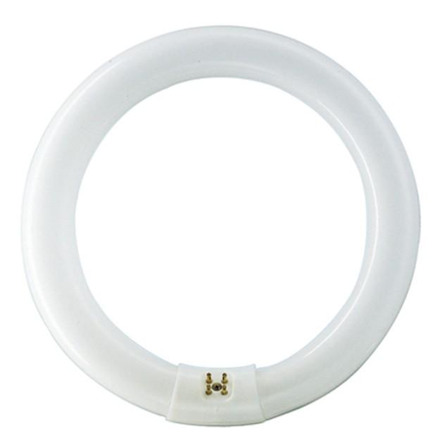 Neon circular 32W Philips Master TL-E G10q lumina rece 303.5 mm