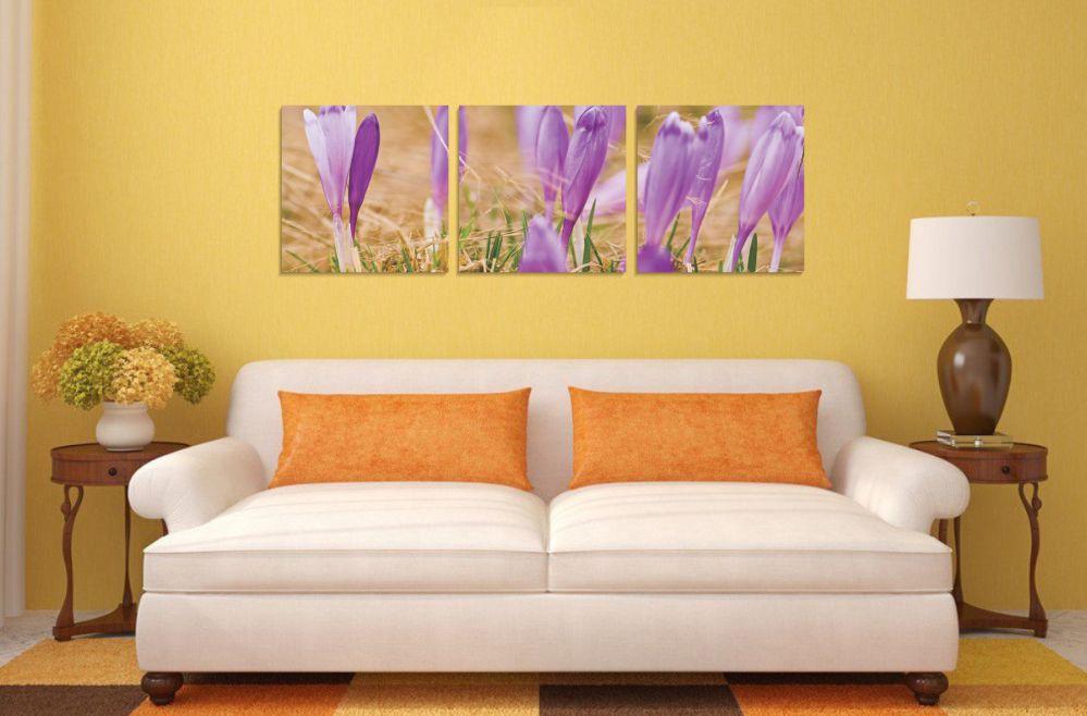 Tablou canvas 3 piese, PT1197 Branduse, panza + sasiu brad, stil floral, 40 x 40 cm