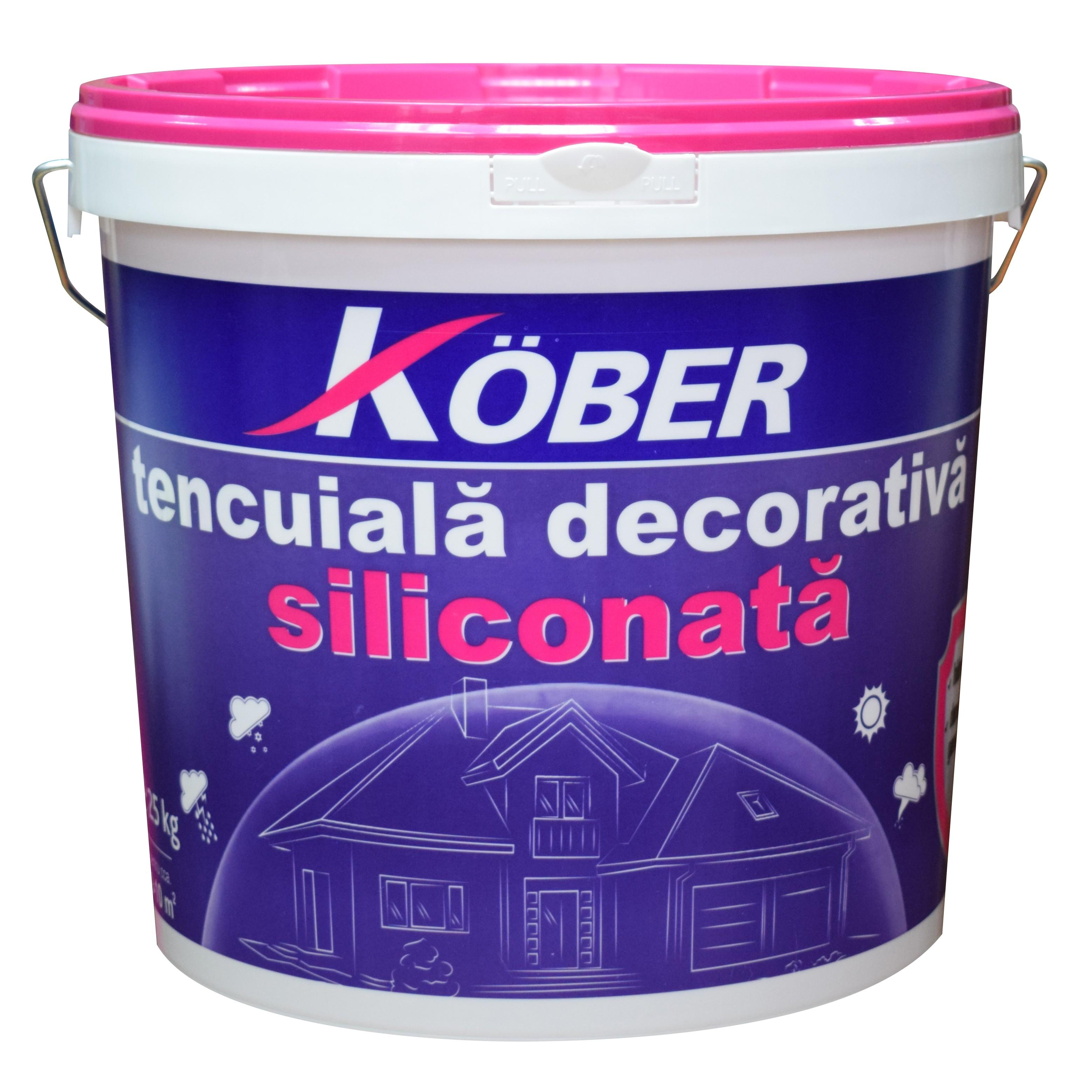 Tencuiala Decorativa Sauber Dekor.Dedeman Tencuiala Decorativa Siliconata Kober Profesional 1 5 Mm
