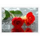 Tablou dualview DTB0645, inramat, canvas + sasiu din lemn de brad, stil floral, 40 x 60 cm