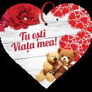 Tablou cu mesaj Valentine s Day, ES9513, inima, 22 x 20 cm