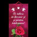 Tablou mic cu mesaj Valentine s  Day, ES9914, dreptunghiular, 25 x 14 cm