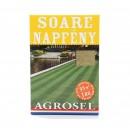 Seminte gazon soare Agrosel, 1 kg