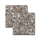 Granit g5664 30,5x30,5x1cm